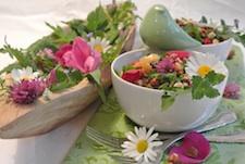 Küchenblog Jungmayr