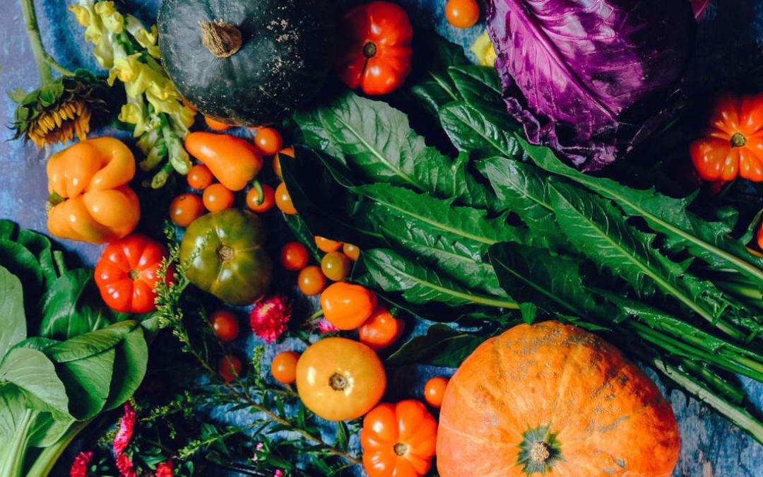 Sind Bio-Lebensmittel gesünder?