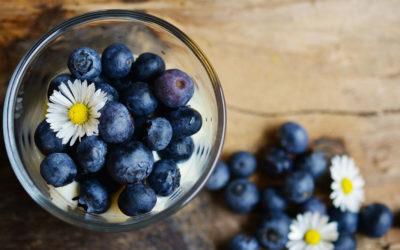 Blaubeeren – Unsere liebsten Rezepte mit dem Superfood