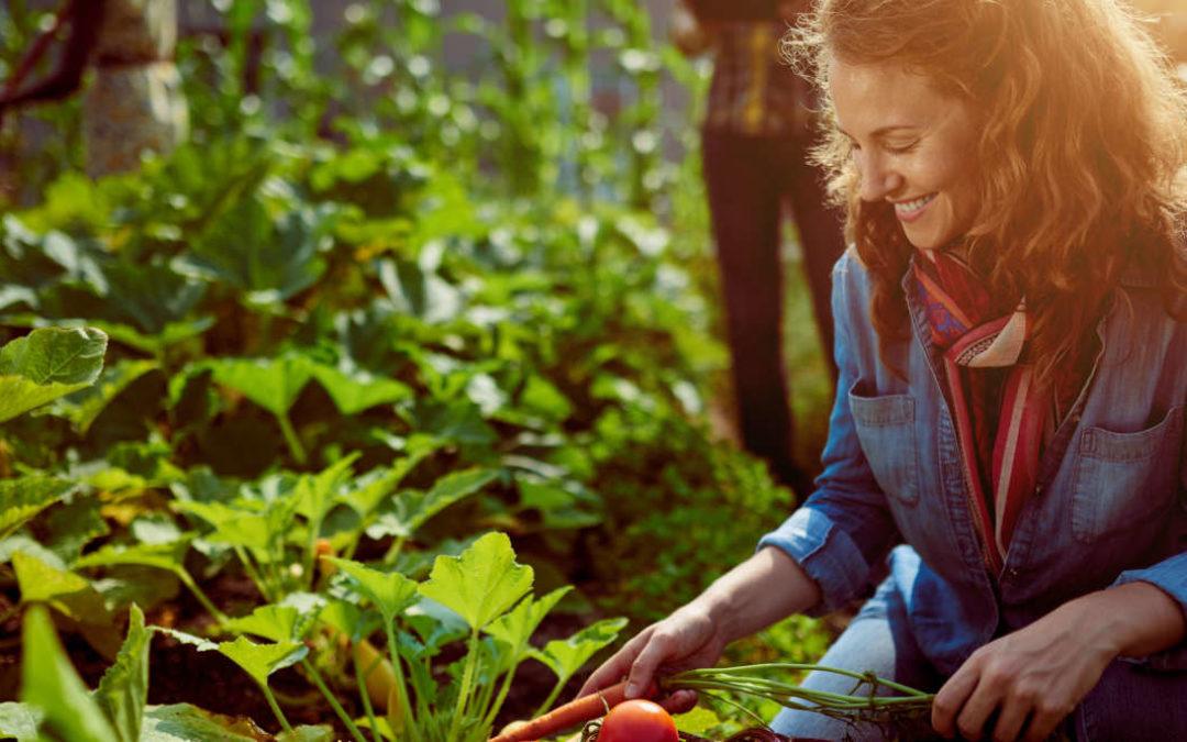 Wie nachhaltig leben Sie?