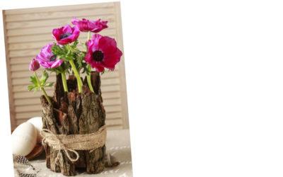 Voller Energie dank Frühlingsblumen