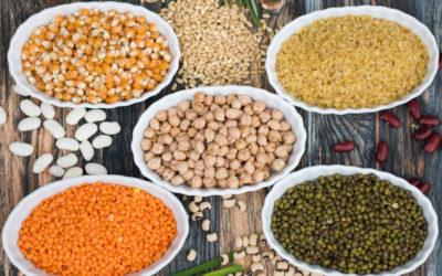 Rezepte mit Reis, Hirse, Linsen oder Kichererbsen
