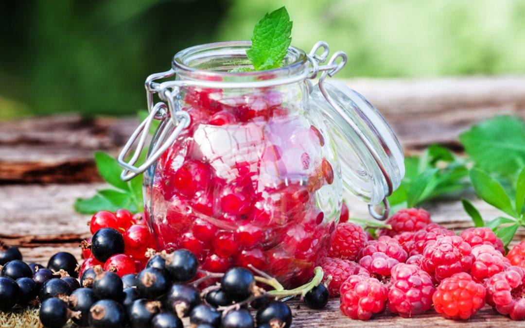 Einmach-Rezepte für Beeren – Sommer in Gläsern